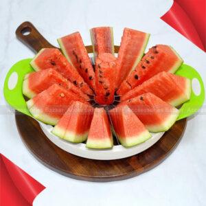 Apple Watermelon Slicer Fruit Cutter Corer Divider Kitchen Gadget Tool
